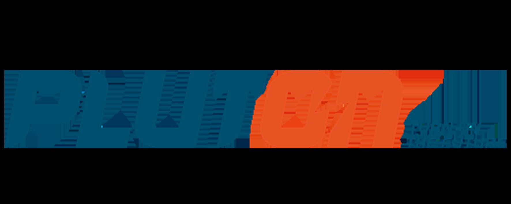 Pluton | Logo
