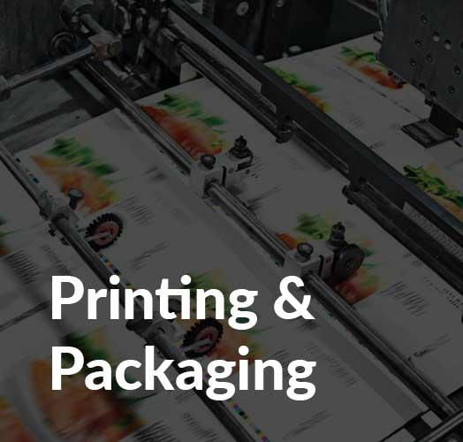 Printing_and_packaging_industry_wms_2jpg